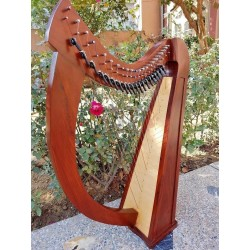 22 String Celtic Harp